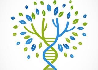 Blue and green DNA strand forming tree shape.